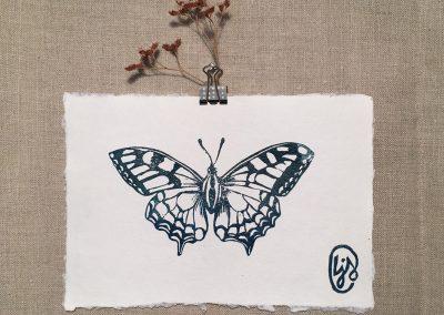 LJ-Butterfly